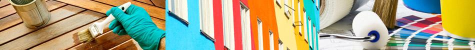 Color Service Offre prodotti per i professioniti